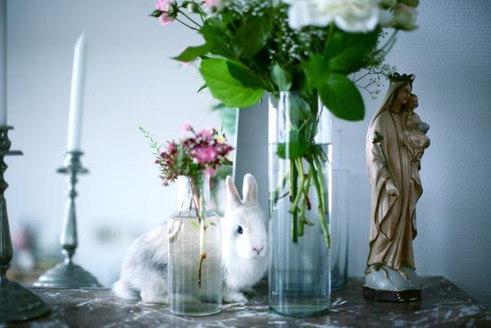 decorar con naturaleza el salon plantas, virgenes, animales niños y jarrones